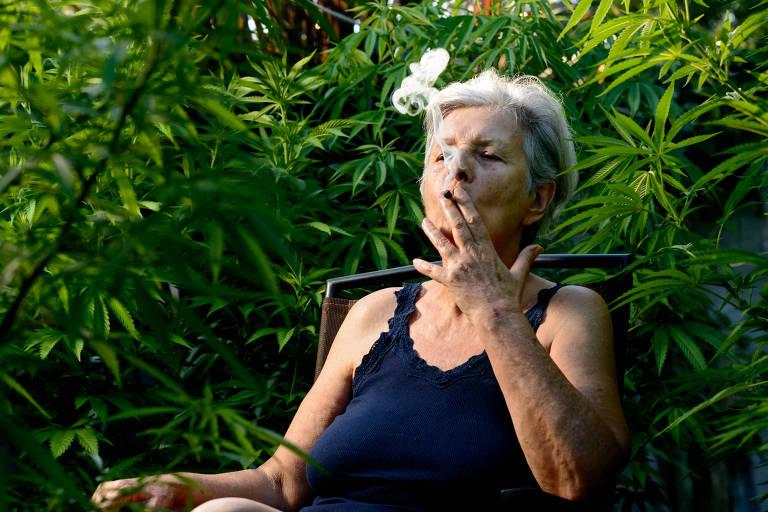 Alicia Castilla Uruguay cannabis seedellla