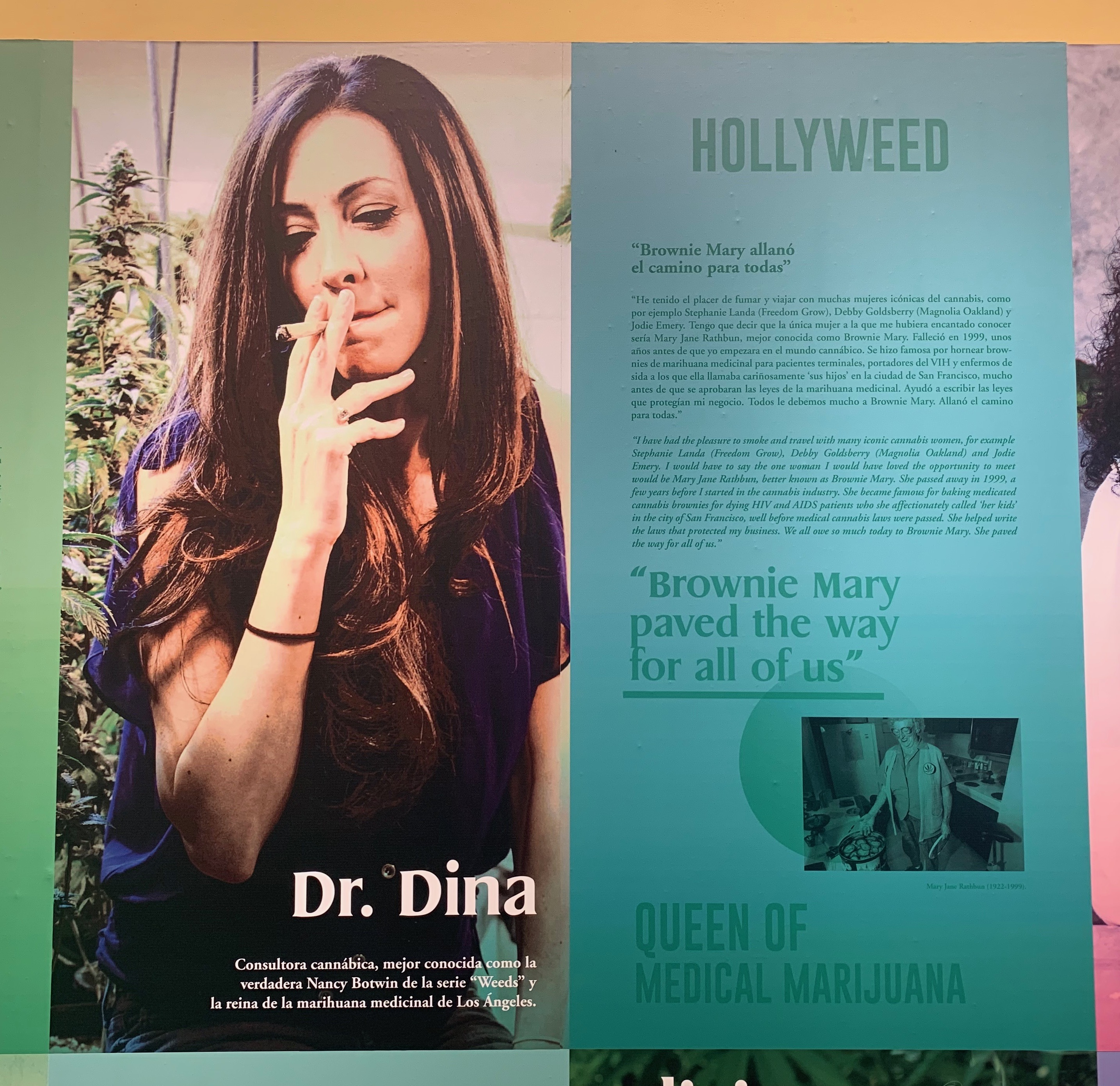 dr dina snoop dogg hollywood cannabis