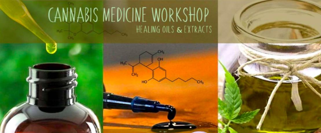 cannabis medicine workshop seedella