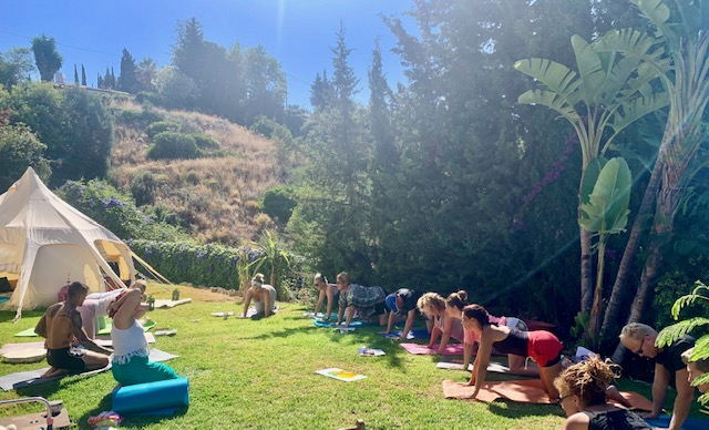 seedella cannabis wellness retreats